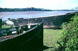 Purton Barge Graveyard